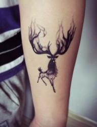 时尚经典的小鹿图案纹身