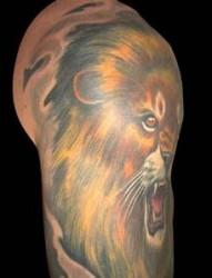 男生纹身图片—经典狮子半甲纹身图片