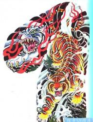 搜集的一幅时尚很酷的半甲老虎纹身手稿图片作品展示