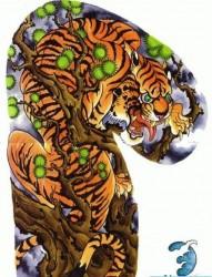 超酷经典传统半甲老虎纹身图片