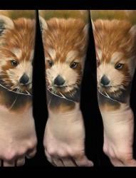 欧美女性手臂卡其的狐狸纹身