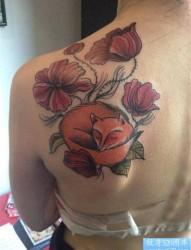 女性背部狐狸纹身图案