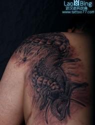 纹身图库肩部蜈蚣纹身图案
