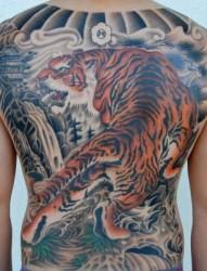 满背帅气的上山虎纹身