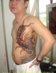 侧腰部蜈蚣纹身图案