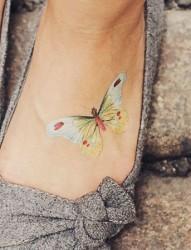 可爱的小动物脚背纹身