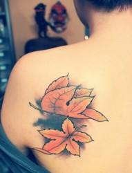 好看的楓葉紋身