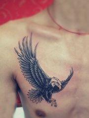 胸前展翅翱翔的雄鹰纹身