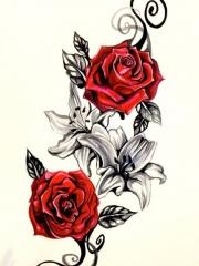 嬌艷欲滴的紅玫瑰紋身手稿