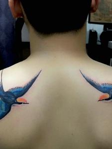 后背穿花衣的兩只小燕子紋身刺青