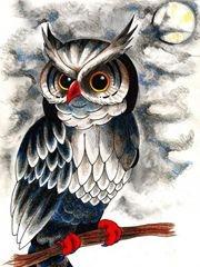 个性时尚的猫头鹰纹身素材手稿