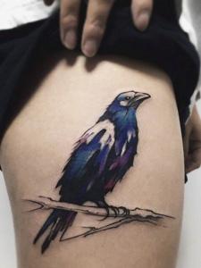 腿部一只静静的彩色乌鸦纹身刺青