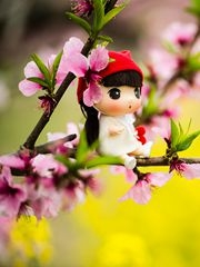 桃花盛開的地方