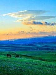 陪你一起看草原