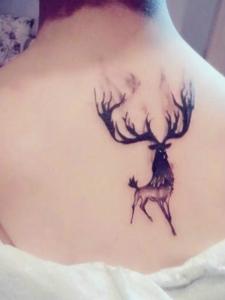 一組惹人愛的可愛小鹿紋身圖案