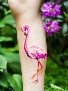一组年轻派的火烈鸟系列纹身图案