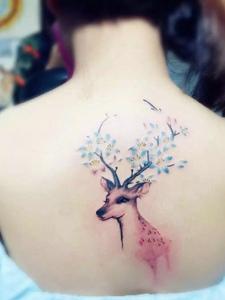 女生后背彩色小鹿纹身图案非常可爱
