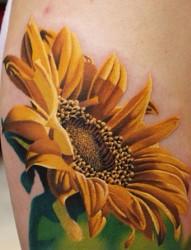 经典彩色花朵纹身
