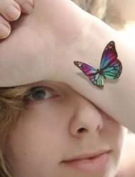 清爽淡雅的胡蝶纹身