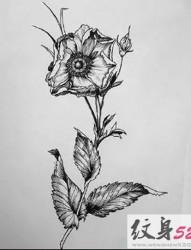 简约黑灰纹身手稿集