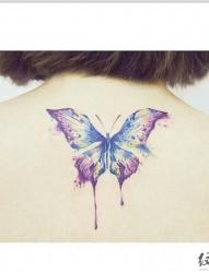 漂亮的蝴蝶图腾纹身
