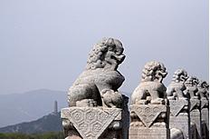 石狮子高清图片