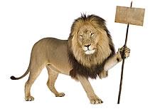 狮子广告高清图片