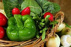菜篮子里的多种蔬菜图片