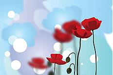 蓝色梦幻罂粟花图片