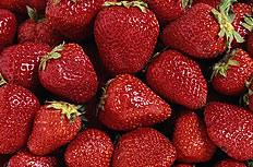 草莓素材图片