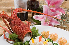 澳洲龍蝦與紅軍酒圖片