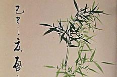 国画竹子图片