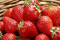 新鲜的草莓图片