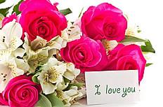 玫瑰百合花图片