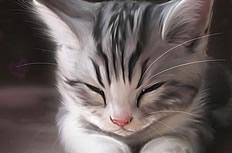 可爱的手绘猫咪图片