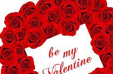 红色玫瑰花卡片背景图片