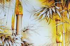 彩绘竹子画图片