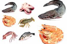 海产品高清图片