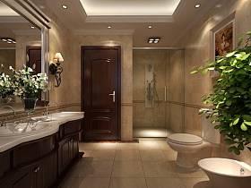 歐式衛生間別墅裝修案例