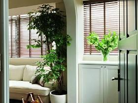 美式简约玄关植物玄关柜柜子图片