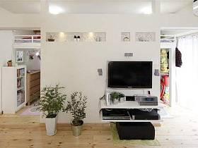 自然溫馨植物電視柜柜子馬賽克射燈裝飾品案例展示