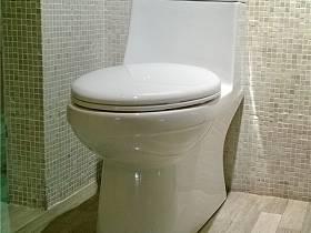 馬桶設計案例